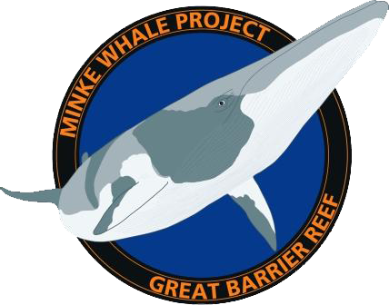 Minke Whale Project